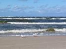 Morze w Grzybowie_4