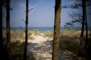 Morze w Grzybowie